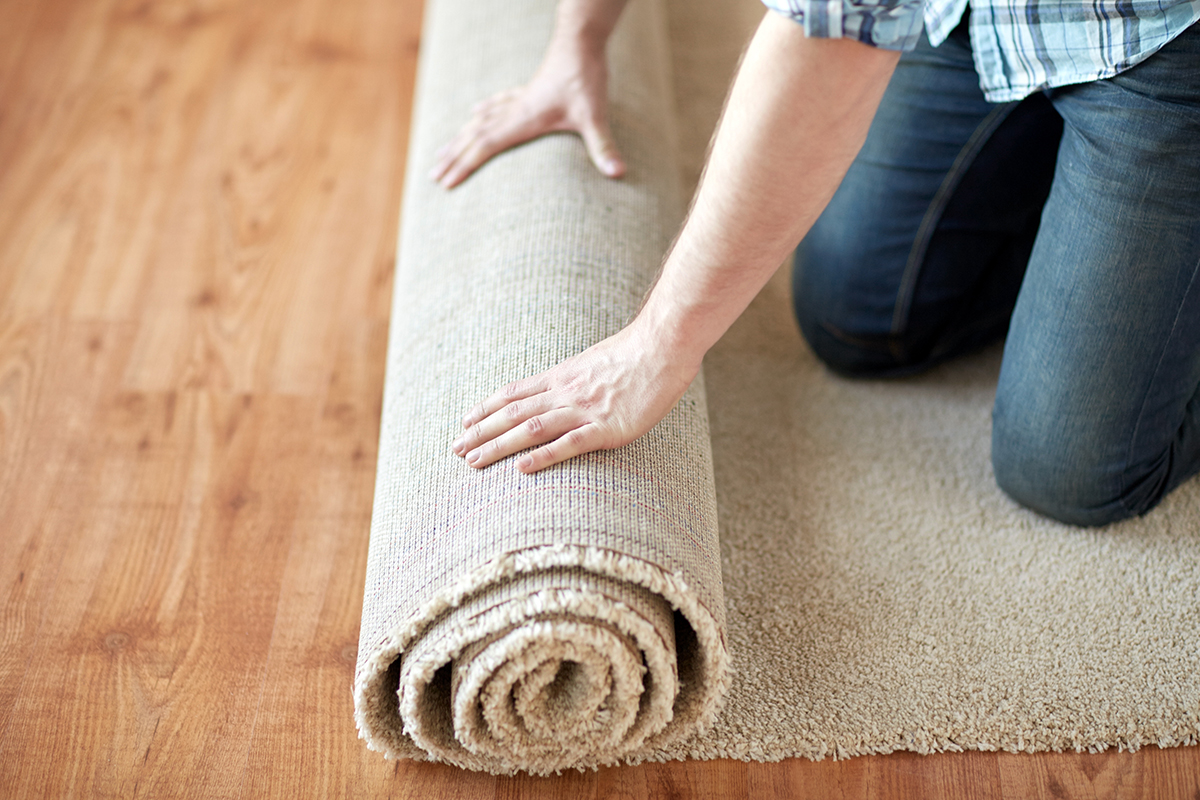 BioHomeCares - 10 step to remove mould from carpets and floors