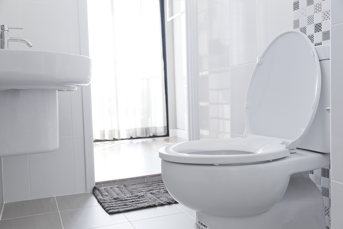 BioHomeCares - How to unclog BioHomeCares - toilet