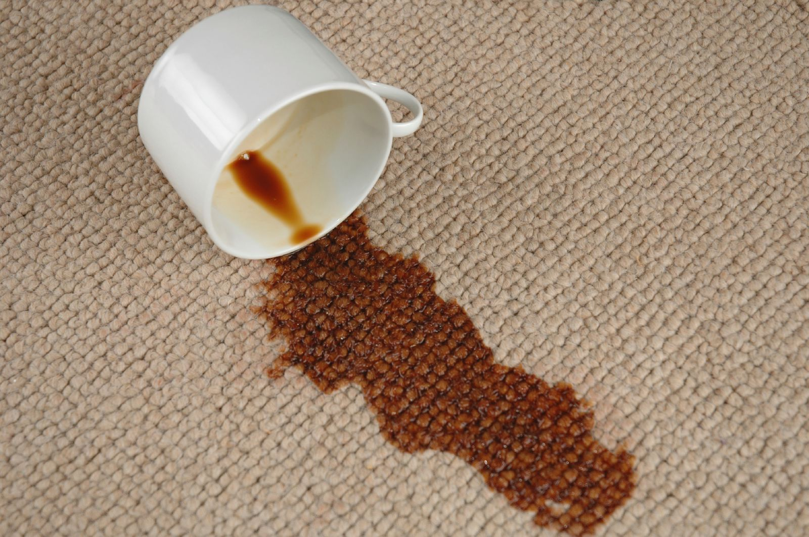 How To Remove Coffee Stains Bio Home By Lam Soon